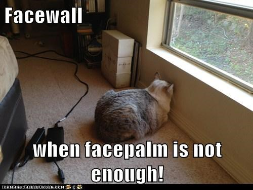 Facewall  when facepalm is not enough!