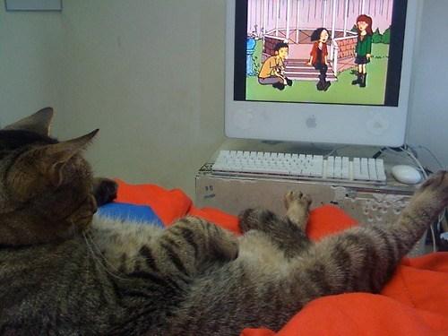 Dukie Fell Asleep Watching Daria Again