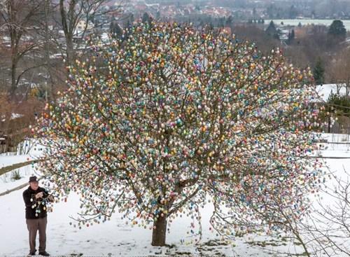 design,easter eggs,tree