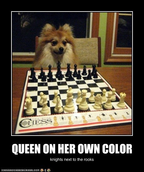 QUEEN ON HER OWN COLOR