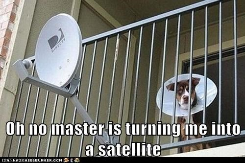 Oh no master is turning me into a satellite