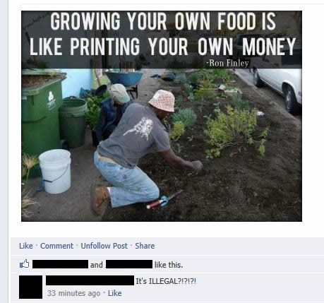 Growing your own food...