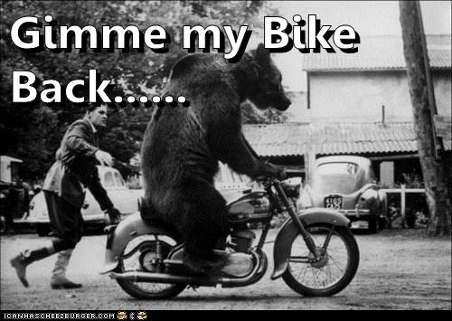 bicycles,motorcycles,bears