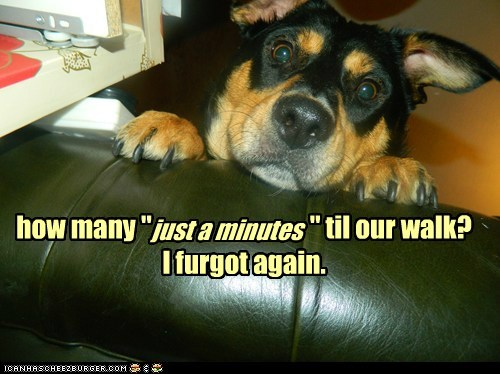 """Just a Minute"" Means ONE...."