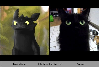 Toothless Totally Looks Like Comet