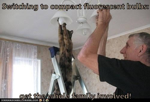 Switching to compact fluorescent bulbs:  get the whole family involved!