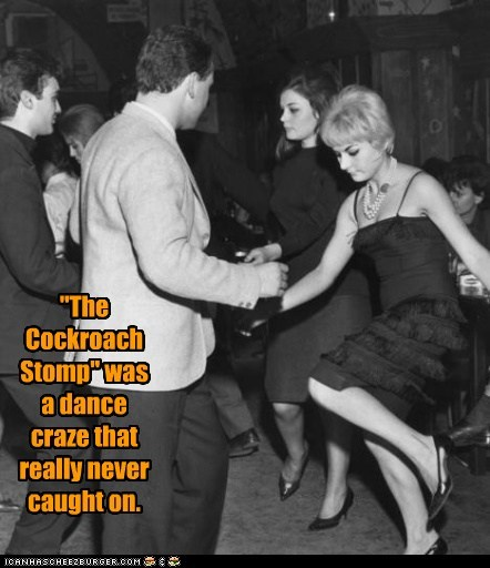 """The Cockroach Stomp"""