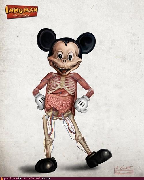 Inside Mickey