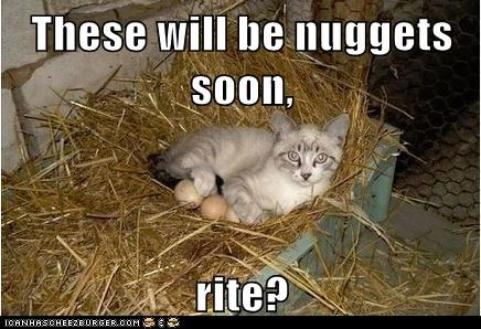 These will be nuggets soon,  rite?