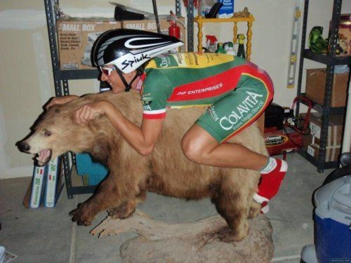 Bear Racing Essentials