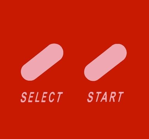 Select Partner, Start Life Together