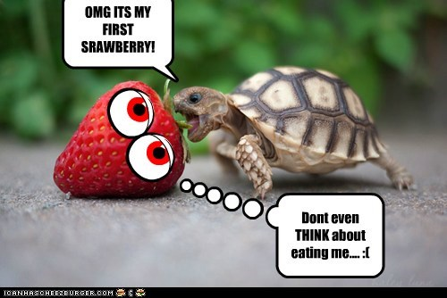 OMG ITS MY FIRST SRAWBERRY!