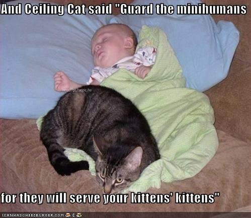 "And Ceiling Cat said ""Guard the minihumans  for they will serve your kittens' kittens"""