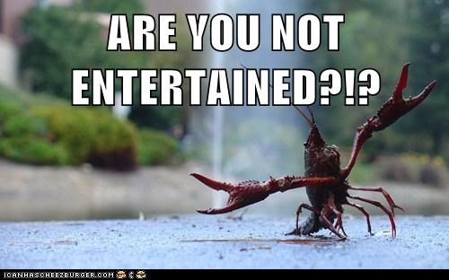 ARE YOU NOT ENTERTAINED?!?