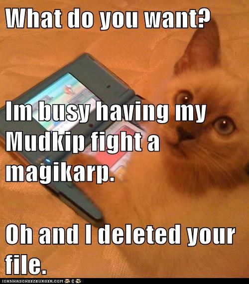 What do you want? Im busy having my Mudkip fight a magikarp. Oh and I deleted your file.