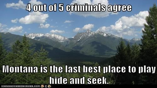 4 out of 5 criminals agree  Montana is the last best place to play hide and seek.