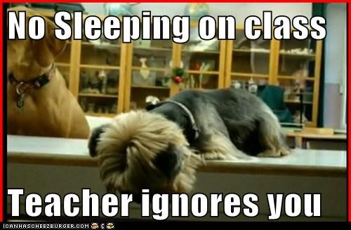 No Sleeping on class  Teacher ignores you
