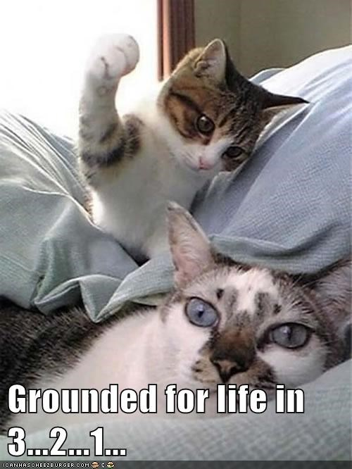 Grounded for Life in 3...2...1...