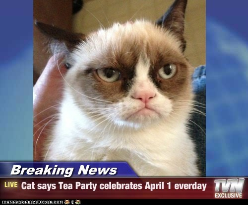Breaking News - Cat says Tea Party celebrates April 1 everday