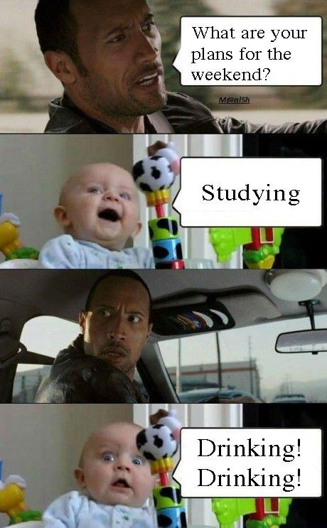 studying,drinking,alcohol,weekend,the rock