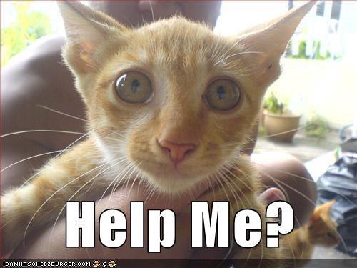 Help Me?