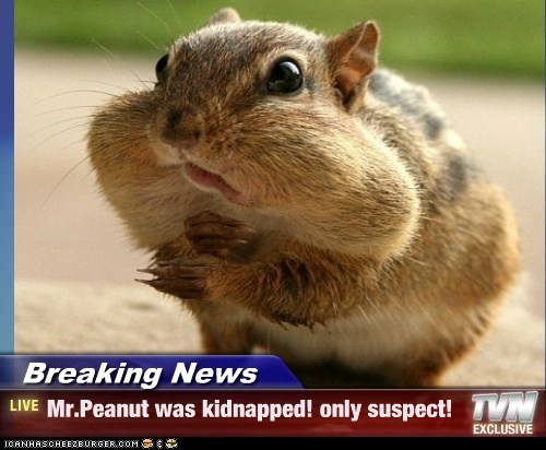Breaking News - Mr.Peanut was kidnapped! only suspect!
