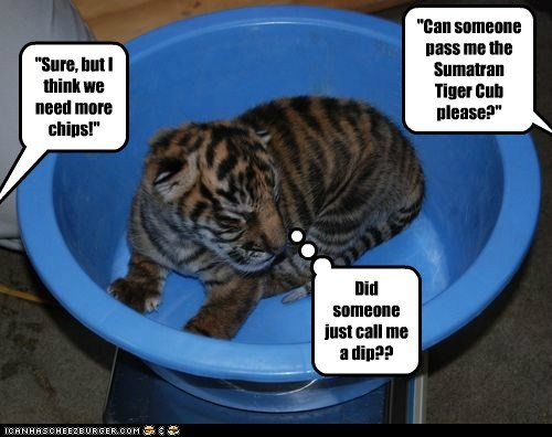 """Can someone pass me the Sumatran Tiger Cub please?"""