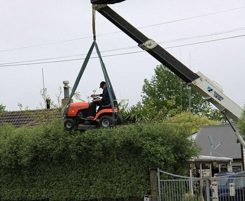 Can You Think of an Easier Way to Trim a Hedge?