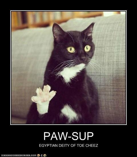 PAW-SUP