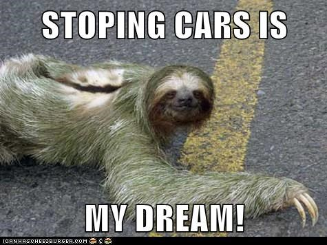 STOPING CARS IS  MY DREAM!