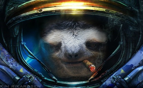 starcraft,art,sloths