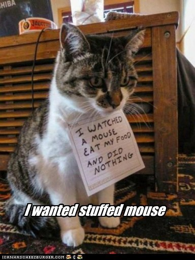 I Wanted Stuffed Mouse