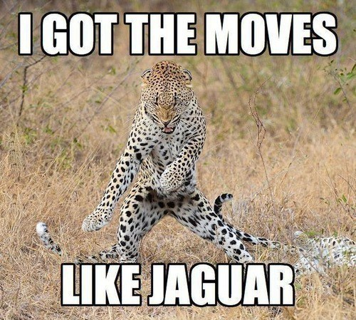 mcjagger,jaguar,moves