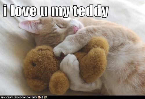 i love u my teddy