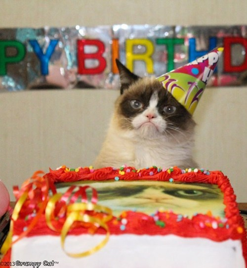 Happy Birthday, Grumpy Cat!