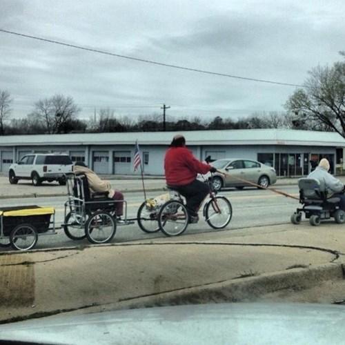 bicycles,transportation,parade