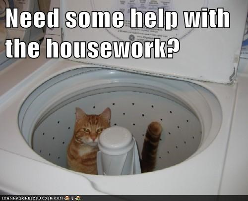 Need some help with the housework?