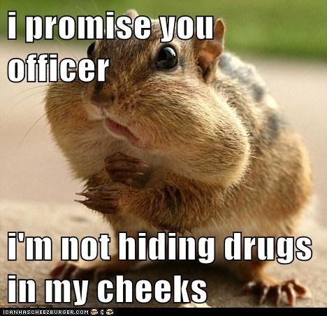 i promise you officer  i'm not hiding drugs in my cheeks