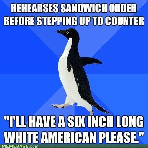 socially awkward penguin,sandwiches,that sounds naughty