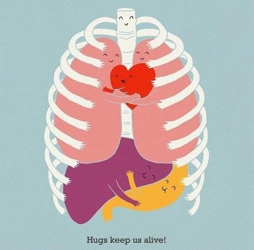 internal organs,art,hugs,science