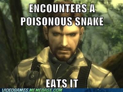 image macros,snakes,video games,metal gear