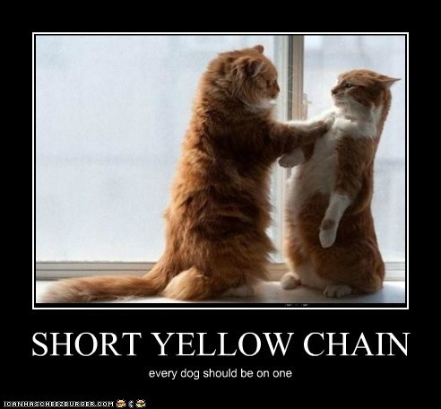 SHORT YELLOW CHAIN