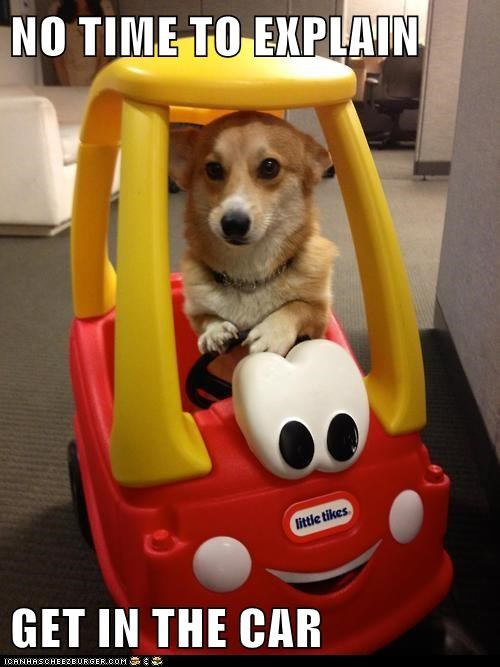 NO TIME TO EXPLAIN  GET IN THE CAR