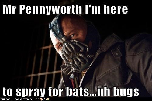 Mr Pennyworth I'm here  to spray for bats...uh bugs