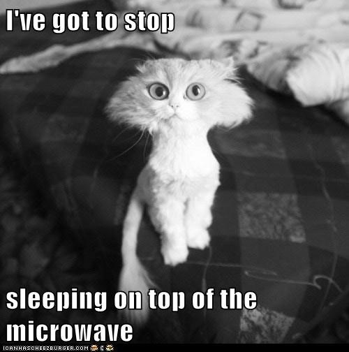 I've got to stop   sleeping on top of the microwave