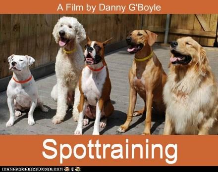 trainspotting,Movie,ewan mcgregor