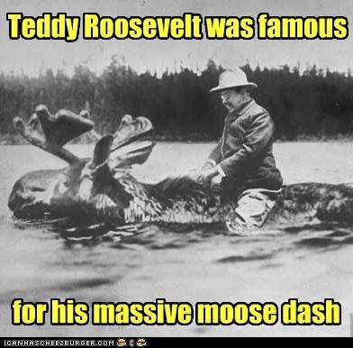 lakes,teddy roosevelt,moose