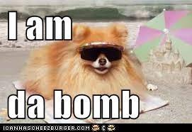 I am   da bomb