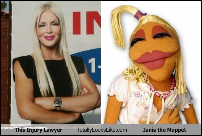 This Injury Lawyer Totally Looks Like Janis the Muppet