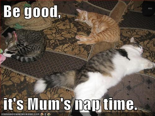 Be good,  it's Mum's nap time.